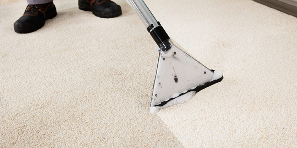 Top 4 Benefits Of Carpet Cleaning Windsor Services