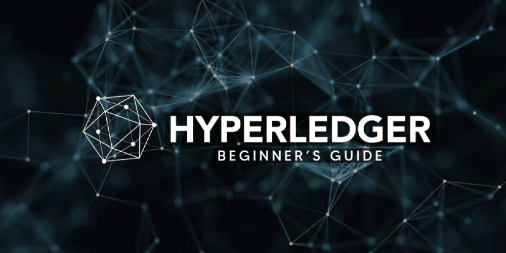 Hyperledger Tutorial | Step-by-Step Guide For Beginners