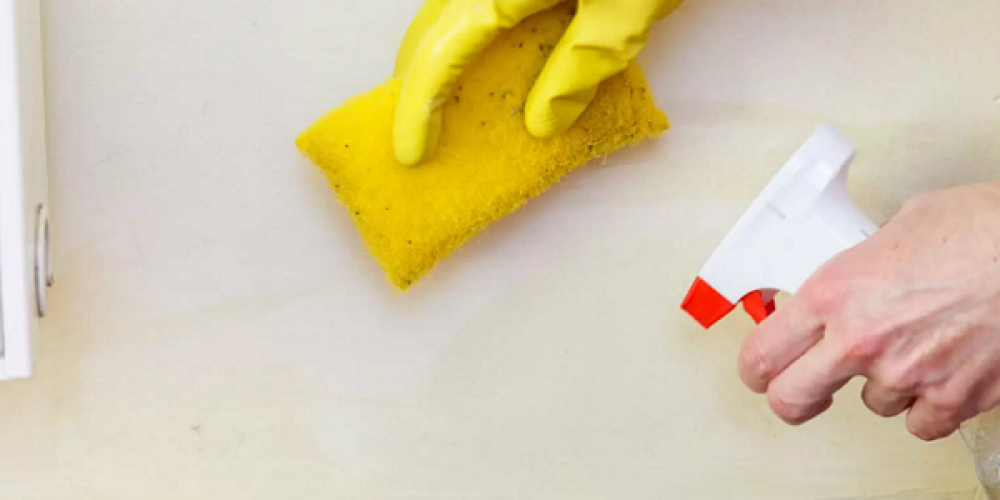 7 Convenient Methods For Home Mold Inspection