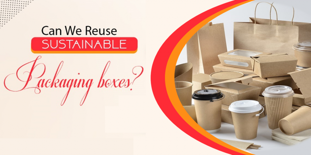 Can We Reuse Sustainable packaging boxes?