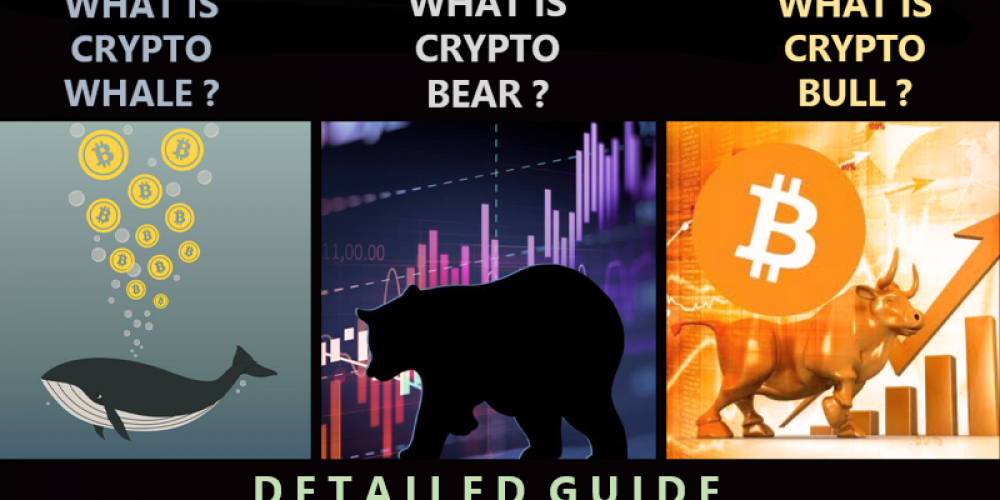 Difference Between Crypto Bull, Crypto Bear and Crypto Whale