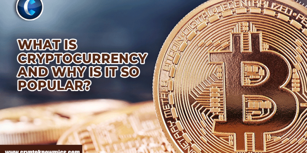 What is Cryptocurrency and why is it so Popular?