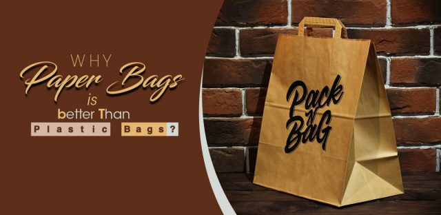 Why Paper Bags is better Than Plastic Bags