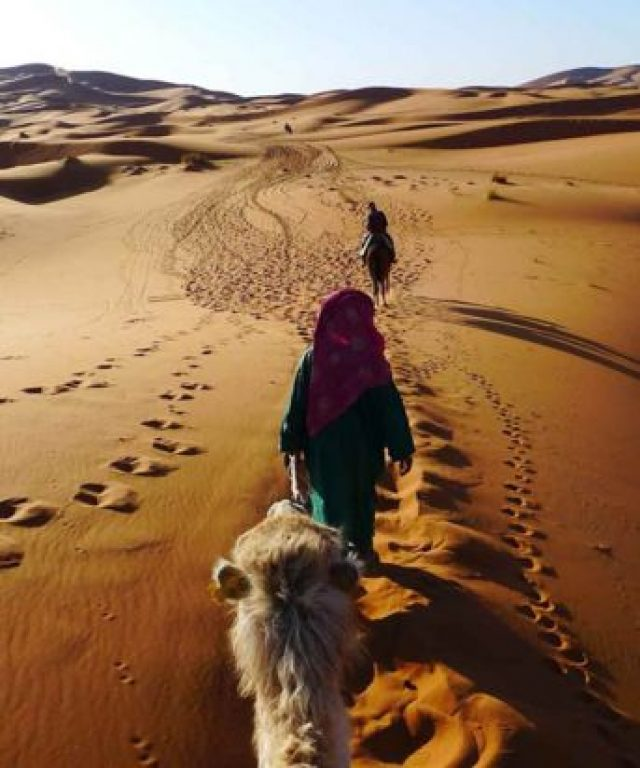 Things You Should NOT Do In Desert Tour to Marrakech!!
