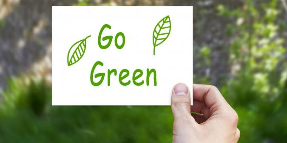 What are the Top Tips to Stay Green after Earth Day?