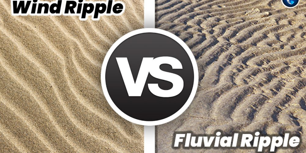 Wind Ripple vs Fluvial Ripple: Everything You Need to Know